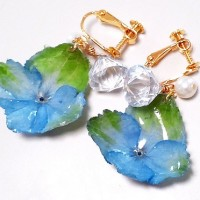 ホンモノ紫陽花のイヤリング