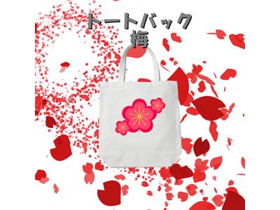 kijibase20171227-3