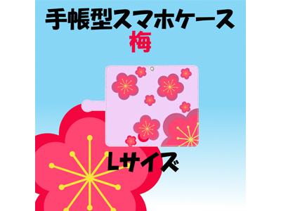 kijibase20180111-6