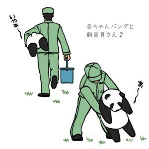 パンダと飼育員2